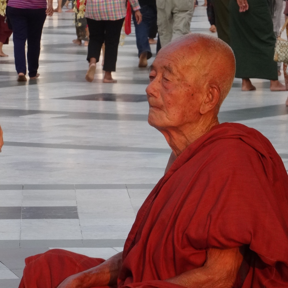 Mind tortle à la paya Shwedagon (Yangon)